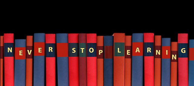 pubblica istruzione